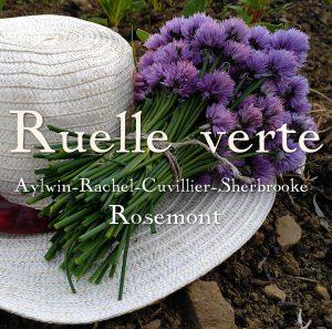 Ruelle verte Aylwin - Sherbrooke - Cuvillier - Rachel (Rosemont)