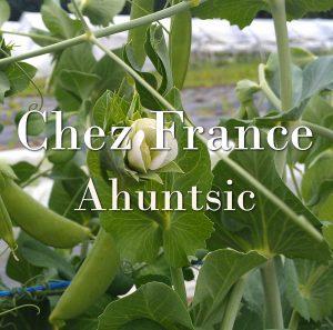 Chez France (Ahuntsic)