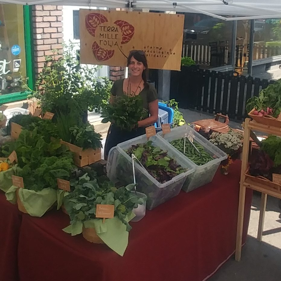 Notre marché à la Coop La Maison Verte