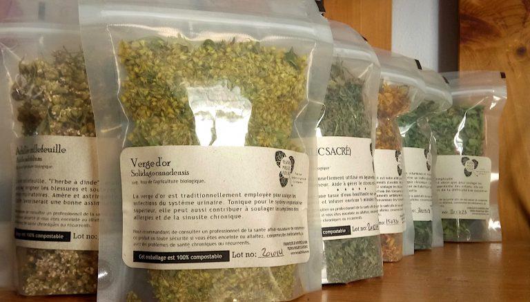 Herbes médicinales recettes maison
